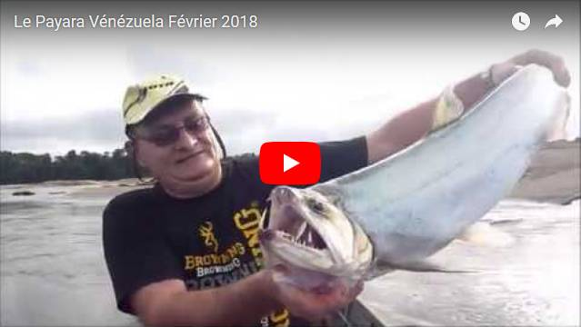 video fishing jungle amazonas Venezuela